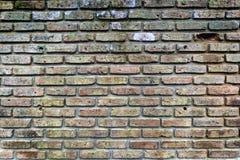 Brique rouge de mur Photo libre de droits