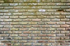 Brique rouge de mur Image stock