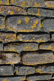 Briques au Brae de Skara, Orkney Image stock