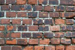 Briques d'obscurité de plan rapproché Image libre de droits