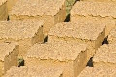 Briques de boue séchant sur le soleil, Népal Photos stock