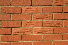 Briques de poissons. Images stock