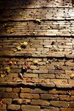 Briques de scories Photos stock