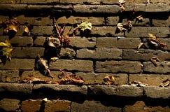 Briques de scories Images libres de droits