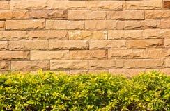 Briques de texture de fond Images stock
