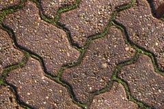 Briques de zig-zag avec de la mousse dans l'intervalle Images libres de droits