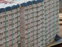 Briques réunies et sur la palette de la livraison Photos stock
