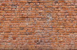 Briques (seulement horizontales) sans couture rouges photographie stock libre de droits