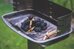 Briquette stock photo