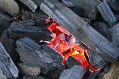 Briquettes d'un rouge ardent de charbon de bois Images stock
