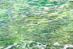 Bris på yttersidan för solljusgräsplanhav royaltyfria bilder