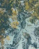 Brisa do verão através das folhas frescas fotografia de stock