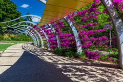 BRISBANE, AUS - NOV 18 2015: Path on a streets Beach in South Ba Stock Image