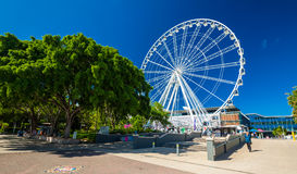 BRISBANE, AUS - NOV 18 2015: The wheel of Brisbane, South Bank P Stock Image