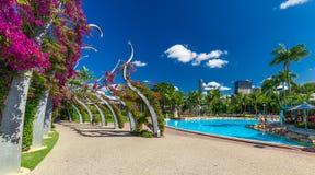 BRISBANE AUS - NOVEMBER 18 2015: Gatastrand i den södra banken Parklan Royaltyfria Bilder