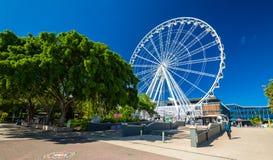 BRISBANE AUS - NOVEMBER 18 2015: Hjulet av Brisbane, södra bank P Fotografering för Bildbyråer