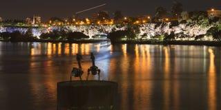 Brisbane, Australia - 23 de abril de 2016: Vista de dos esculturas del pelícano del metal y ríos de Brisbane en los 23ro de abril Imagen de archivo libre de regalías