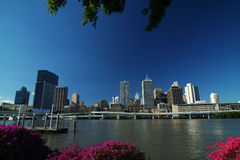 Brisbane City. Against Blue Sky royalty free stock photography