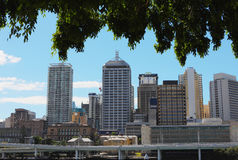 Brisbane city. The brisbane city in the morning stock photography