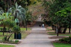 Brisbane City Botanic Gardens Stock Photography