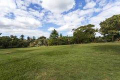 Brisbane City Park Royalty Free Stock Images