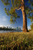 Brisbane city in sight. View from brisbanes river with the city in the distance Royalty Free Stock Image