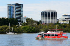 Brisbane CityHopper färjaservice Royaltyfri Bild