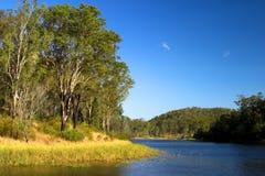 Brisbane Forrest Park Queensland Australia. Natural bushland wildlife nature natural blue sky lake trees ducks Stock Images