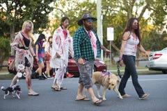 Brisbane, Queensland, Australia - October 5th 2014: Annual brain foundation zombie walk October 5th, 2014 in West end, Brisbane, A Stock Image