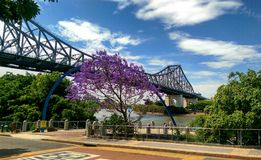 Brisbane River Bridge Royalty Free Stock Images