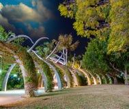 Brisbane. Sentiero costiero del supporto conico di Southbank alla notte Fotografia Stock