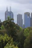 Brisbane Skyline Royalty Free Stock Image