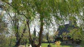 Brise in der Weide nahe bei der hölzernen Kirche im Dorf stock footage