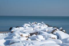 Brise-lames couvert de neige Images libres de droits
