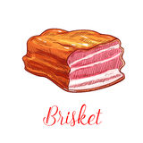 Brisket meat vector sketch isolated icon Royalty Free Stock Photos