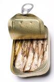 brislingen kan norska sardines Arkivfoto