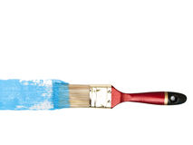 Bristle with blue color Stock Image