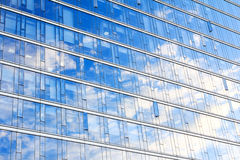 Bristle grass. Glass wall of office building,with reflection of clouds Royalty Free Stock Image