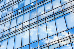 Bristle grass. Glass wall of office building,with reflection of clouds Royalty Free Stock Images