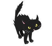 BRISTLED BLACK CAT Stock Image