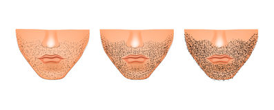 Bristles on the chin. Illustration of stubble on his chin. Male Stock Images