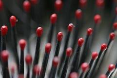 bristles hairbrush Стоковое Изображение