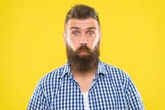 Bristning av skrattet Hipster med emotionellt förvånat uttryck för skägg och för mustasch Lantligt förvånat macho Uppsökt man royaltyfria bilder