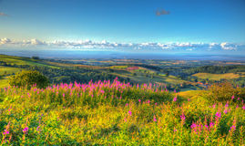 Bristol channel Somerset countryside view from The Quantocks towards Hinkley Point Nuclear Point Stock Image
