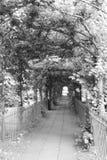 Bristol-weg in Clifton Royalty-vrije Stock Foto