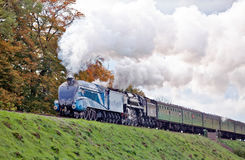 Britannia and Bittern Royalty Free Stock Images