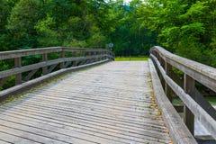 Britge de madeira, rio, céu Fotos de Stock