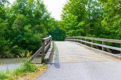 Britge de madeira, rio, céu Imagem de Stock Royalty Free