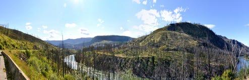Britisch-Columbiawildnis entlang dem Yellowhead H Lizenzfreie Stockfotos
