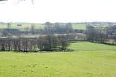Britische Landschaft und Felder Lizenzfreie Stockbilder